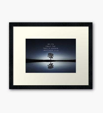 Matthew 12:33 Framed Print