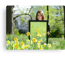 Daffodil Reflections - Spring 2014 NZ Canvas Print