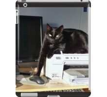 Playing Cat And Mouse - NZ iPad Case/Skin