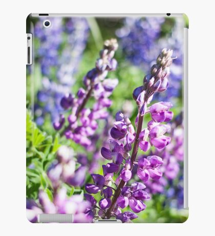 Field of Lupines Photography Print iPad Case/Skin
