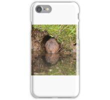 Arvicola amphibius at his front door iPhone Case/Skin