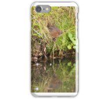 Arvicola Amphibius - side door iPhone Case/Skin