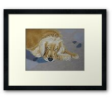 Sleeping Pet Framed Print