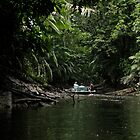 Cannoeing up to the lagoon  tributary  -  Napo River - Amazon by john  Lenagan