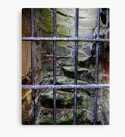 Doors of the World Series #7 Canvas Print