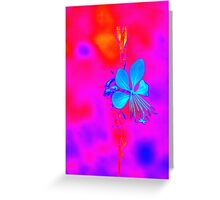 abstract flower in the garden Greeting Card