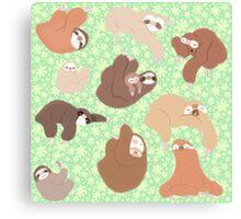 Sloth-mania Canvas Print