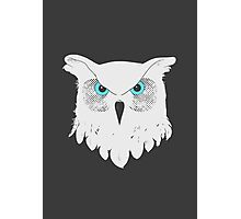 Owl Light Photographic Print