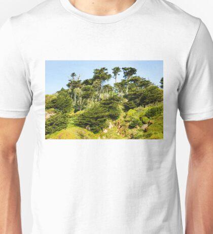 San Francisco Colorful Spring - 3 Unisex T-Shirt