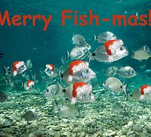 Fish Christmas Card: 2 by Heather Lawrence