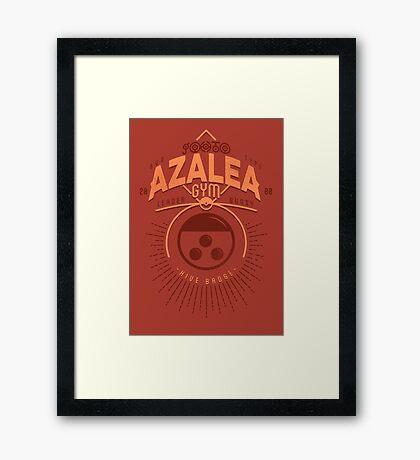 Azalea Gym Framed Print