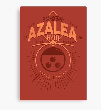 Azalea Gym Canvas Print