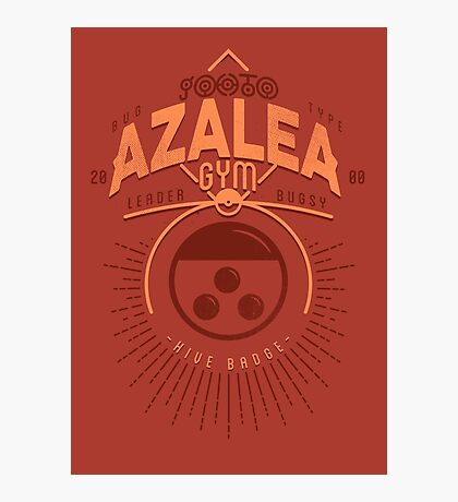 Azalea Gym Photographic Print