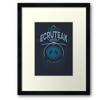 Ecruteak Gym Framed Print