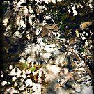 Faerie by LouD