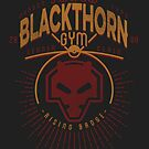 Blackthorn Gym by Azafran