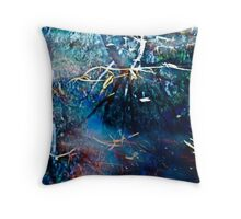Billabong blues Throw Pillow