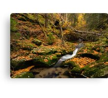 The road of the river Canvas Print