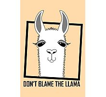 DON'T BLAME THE LLAMA Photographic Print