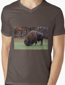 American Field Buffalo grazing Mens V-Neck T-Shirt