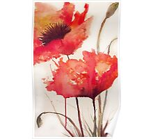 Watercolour Poppies Poster