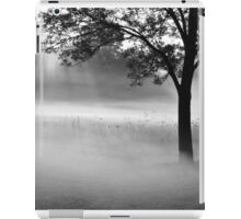 a beautiful morning iPad Case/Skin