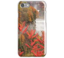 Falls Through the Sumac iPhone Case/Skin