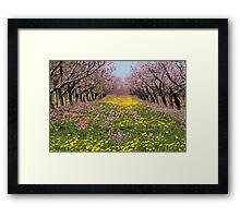 Blossom Heaven Framed Print