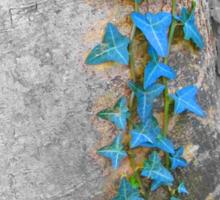 Blue Ivy Sticker