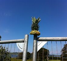 Pineapple On a Fence by Cozzyabe