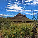 Big Bend Scenic by Lanis Rossi