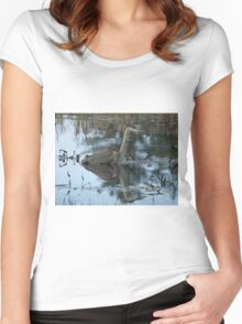 Great Blue Heron Women's Fitted Scoop T-Shirt