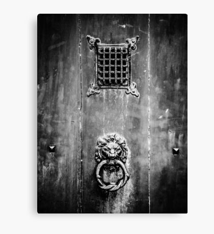 Doors of the World Series #15 Canvas Print