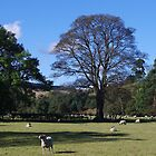 Quintessentially England-33-Pastoral by Francis Drake