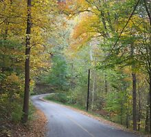 INDIANA HIGHWAYS IN AUTUMN by Pauline Evans
