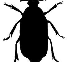 Beetle Silhouette by kwg2200