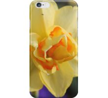 Some Kind of Daffodil iPhone Case/Skin