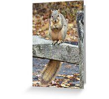 Nutty Buddy Greeting Card