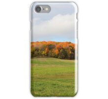 Mound of Fall Color iPhone Case/Skin