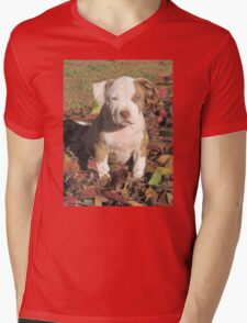 """Spice"" In The Fall Leaves Mens V-Neck T-Shirt"
