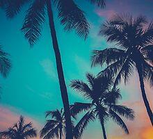 Hawaii Palm Trees At Sunset by mrdoomits
