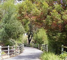 OSO CREEK TRAIL - COUNTRY ESCAPE IN THE CITY by CHERIE COKELEY