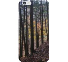Stained Glass Woods iPhone Case/Skin