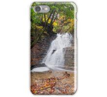 Buttermilk Falls Cascade iPhone Case/Skin