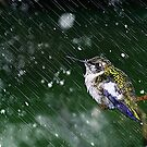 January - I'm wet and cold, leave me alone! by Janice Carter