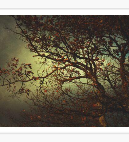 Melancholy Tree Sticker