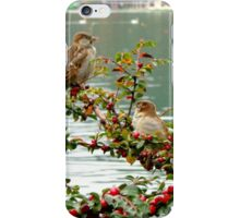 Lake Bled Birds iPhone Case/Skin