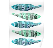 Blue and Green Fish Poster