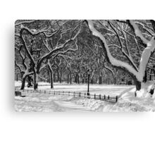 Central Park, NYC Blizzard Canvas Print