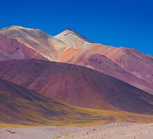 Painted Atacama by Dave Hare